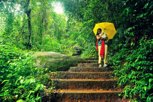 Through the rainforests of Iruppu!