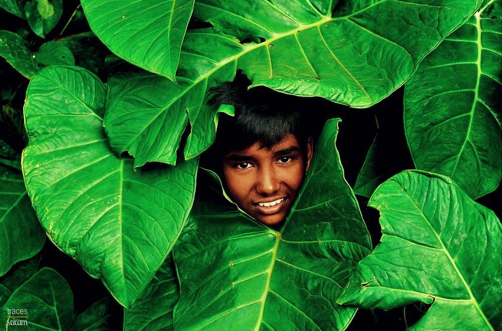The leaf boy!