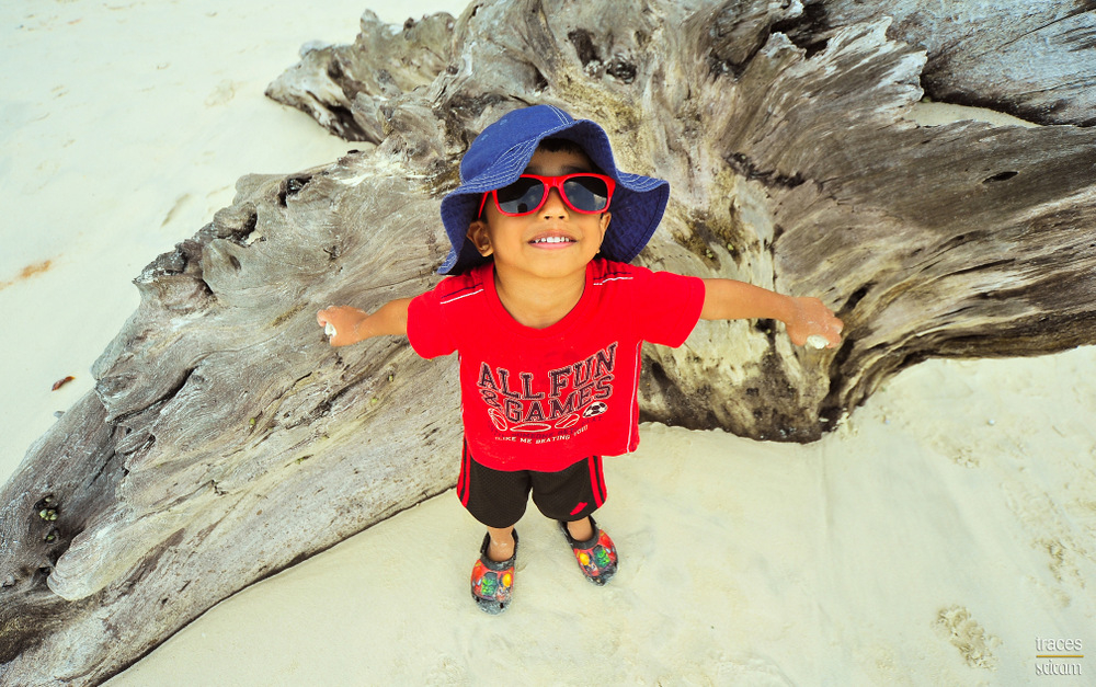 The Beach Boy