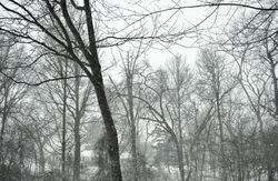 Brazing the snow storm