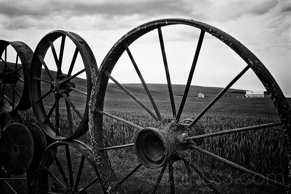 wagon wheel fence