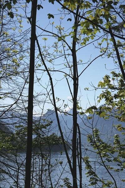 wolfgangsee / upper austria