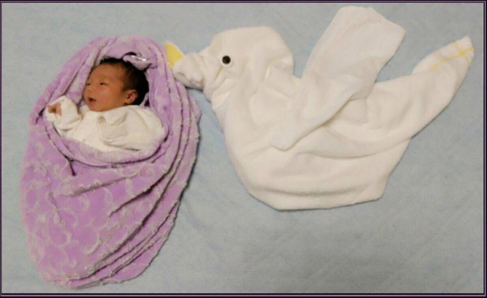 Nezou Art  ( A stork & Baby )