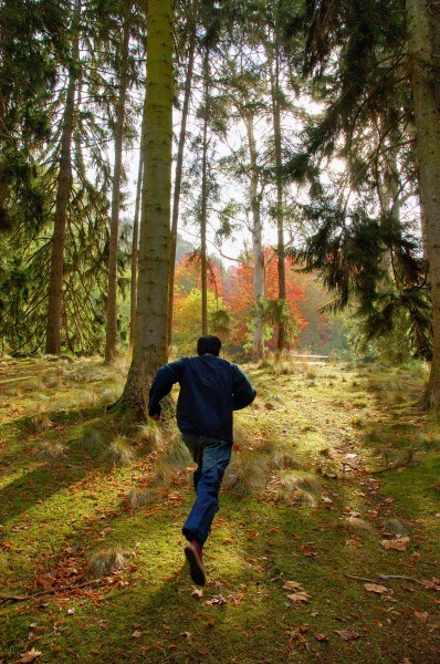 a person running in the forest