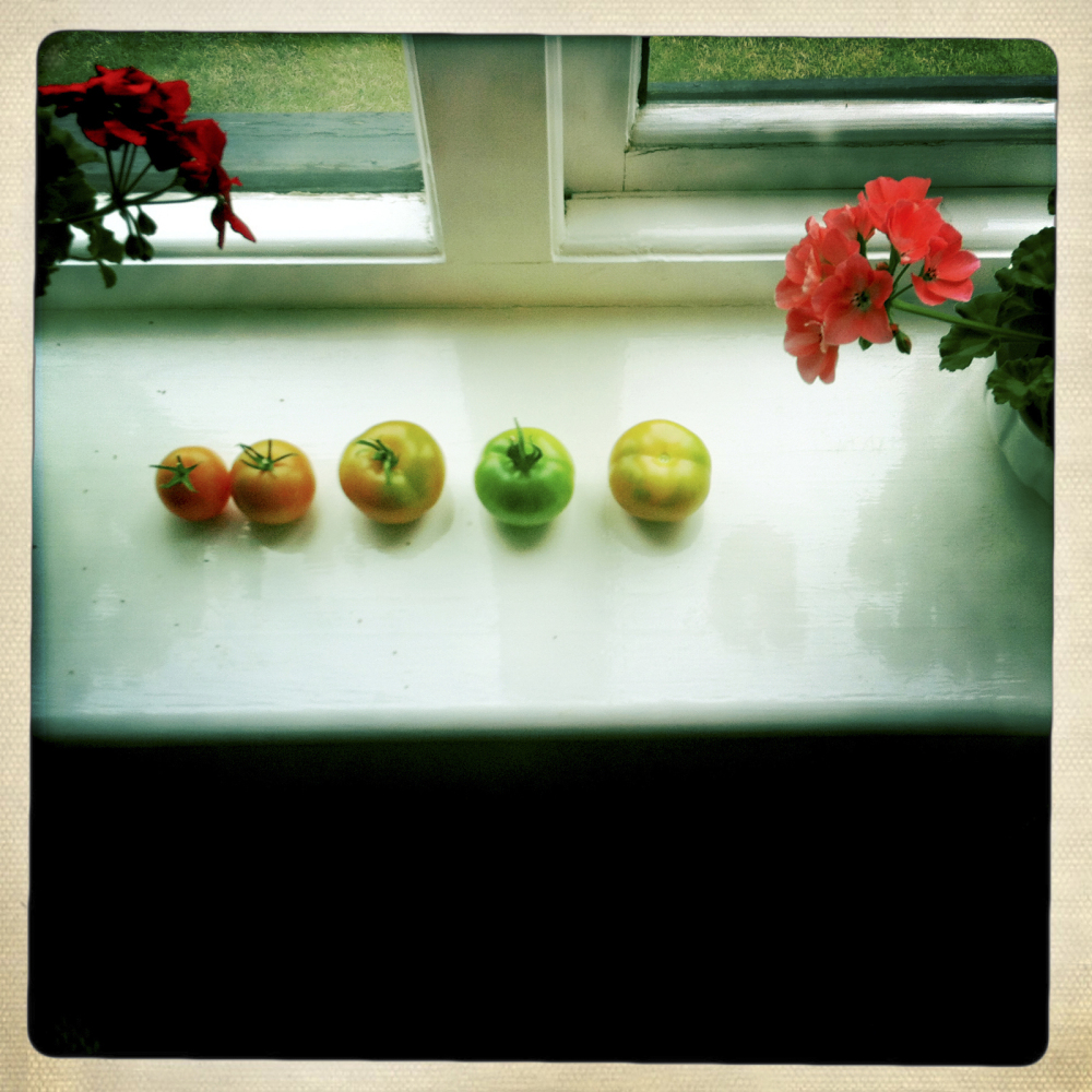 MY MUM'S WINDOW SILL