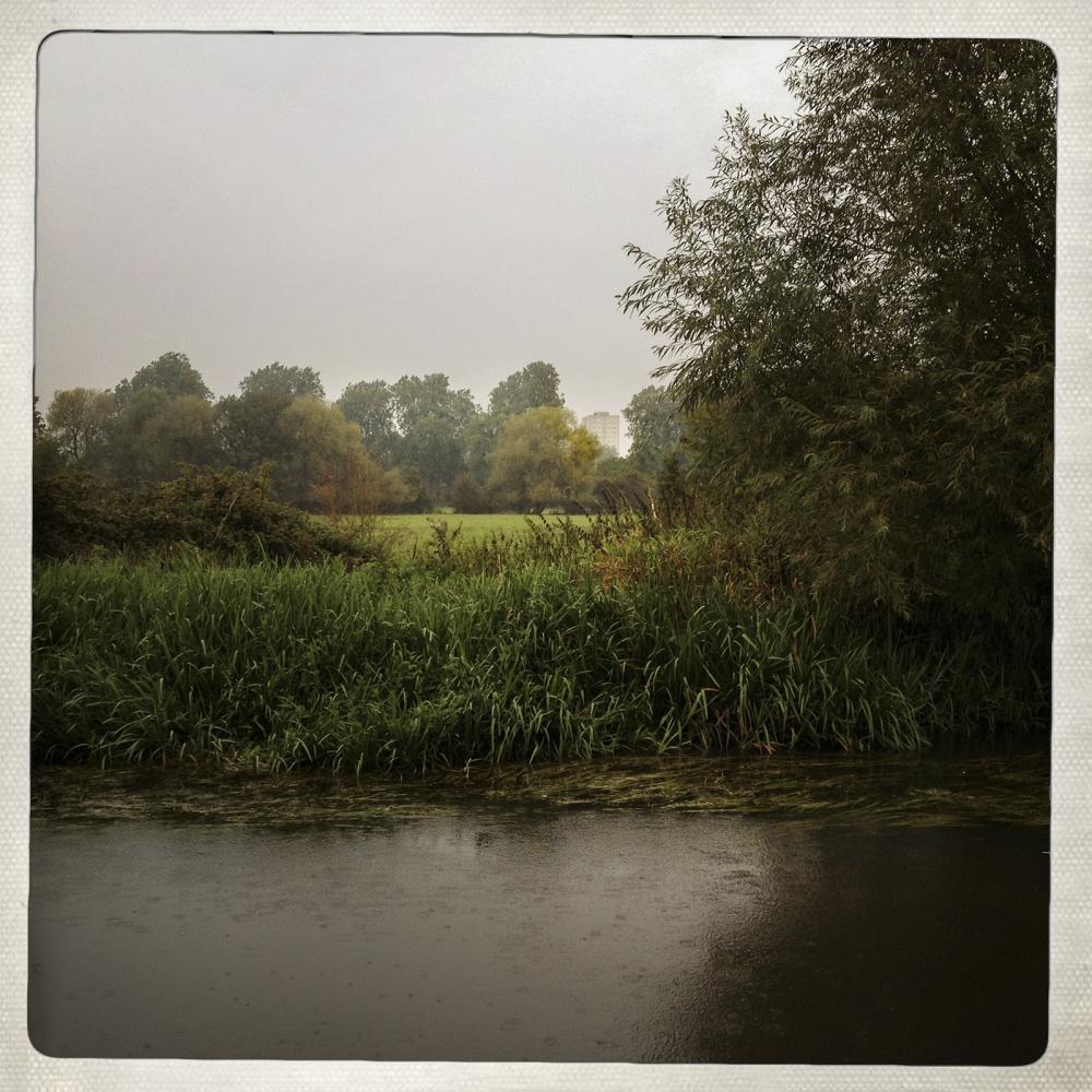 FLATS IN THE RAIN