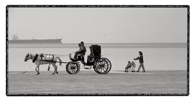 coachman sea thessaloniki horse