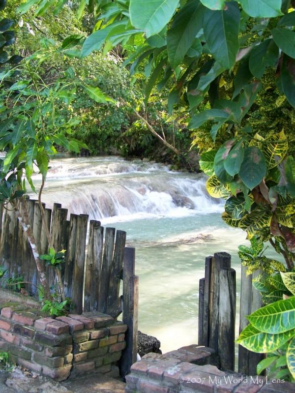 Stream of Paradise