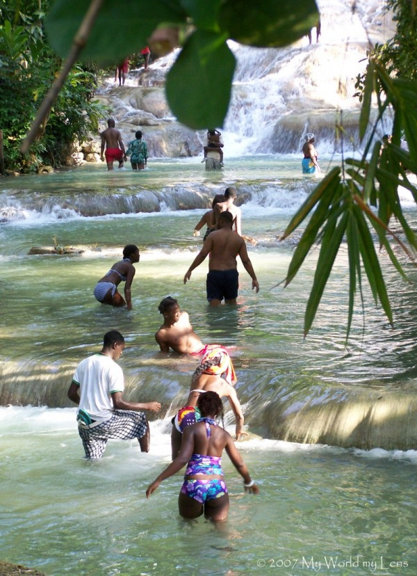 Stream of Paradise 2