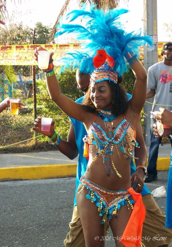 Carnival 2008 (VII)