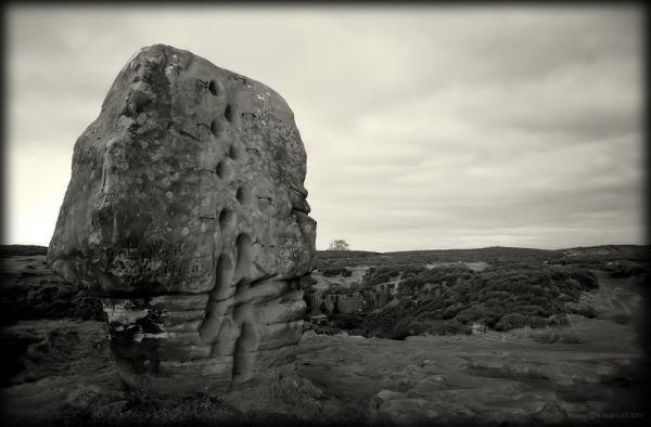 Cork Stone