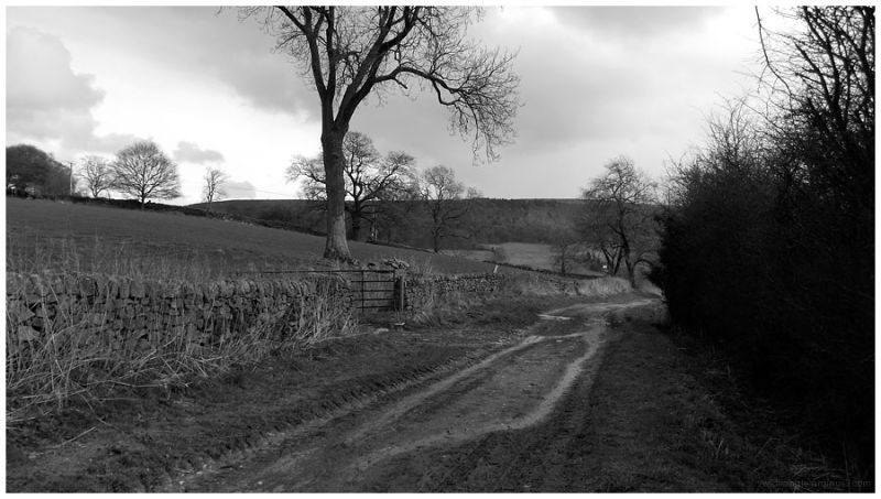 Rowsley to Bakewell
