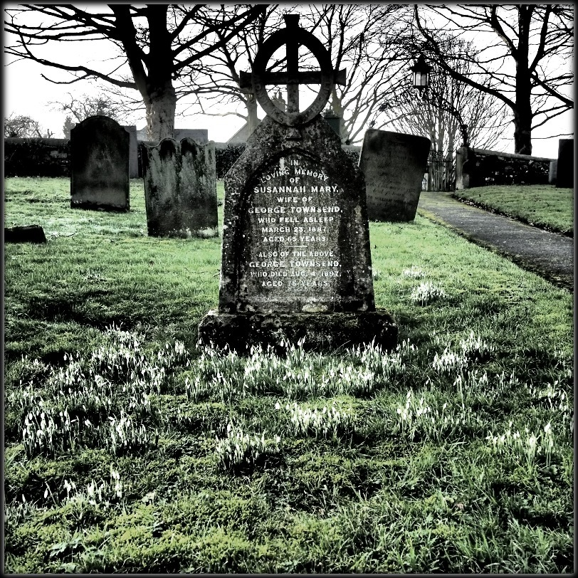 dovedale churchyard graves snowdrops