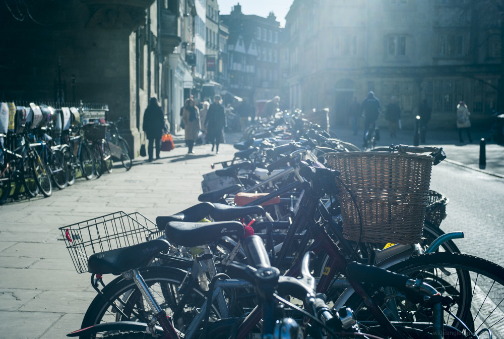 cambridge bike parking sunlight bright
