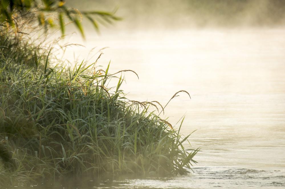 misty sunrise river trent shardlow