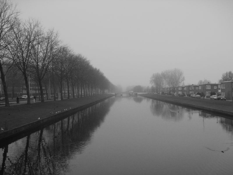 image of a foggy amsterdam canal