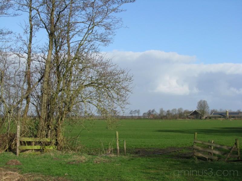 It Fryske Gea (The Friesian Landscape)