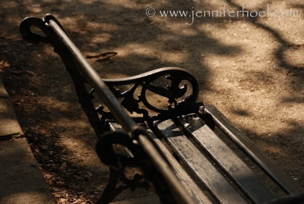 photo of a black iron park bench in charleston