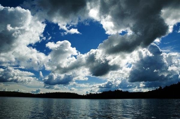 Timberwolf Sky