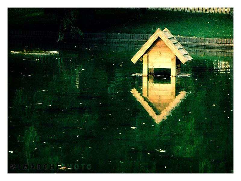 Water Simetry