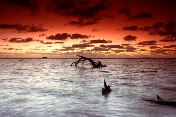Sunrise over Mundoo Channel, SA
