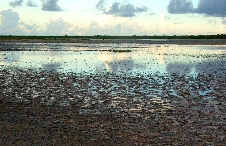 Anegada, BVI - Evening in the Salt Ponds