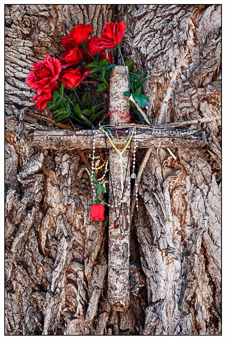 Roses and Cross