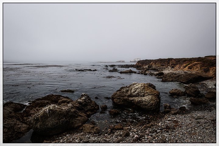 California Landscapes:  Foggy Morning