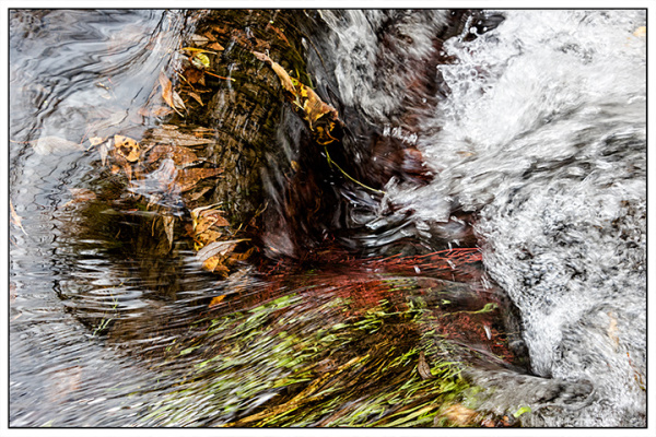 Autumn Waters