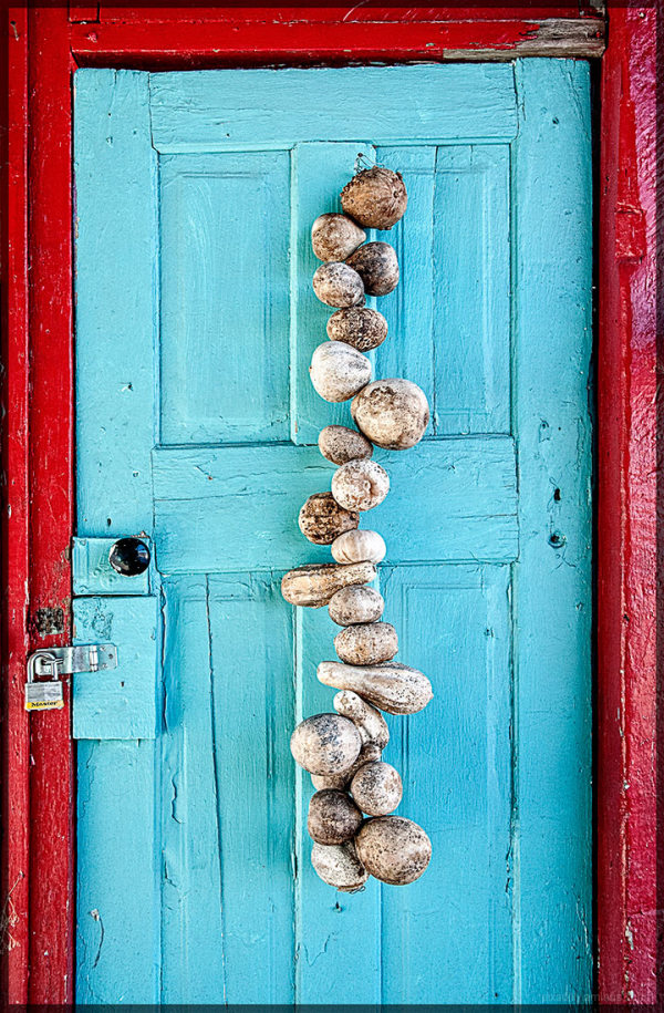 Doors:  Gourds