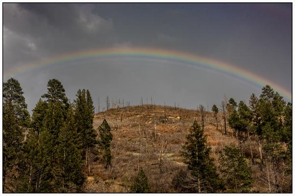 NM Landscapes:  Sugarite Track Fire