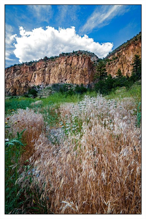 NM Landscapes:  Bandelier National Monument
