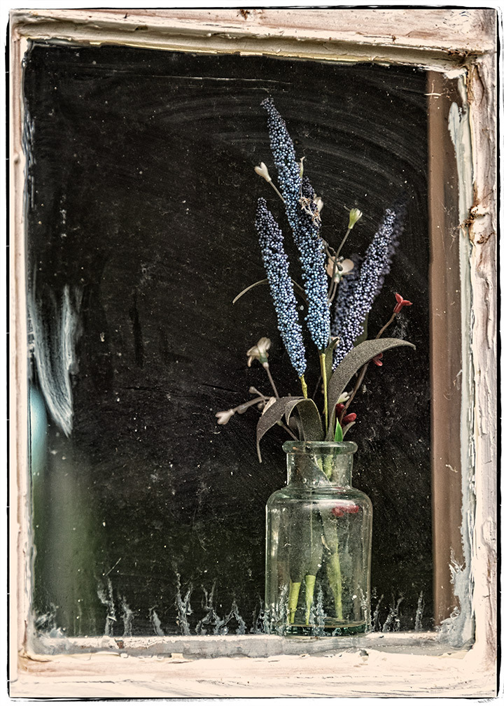 Blue Flowers in Dirty Window