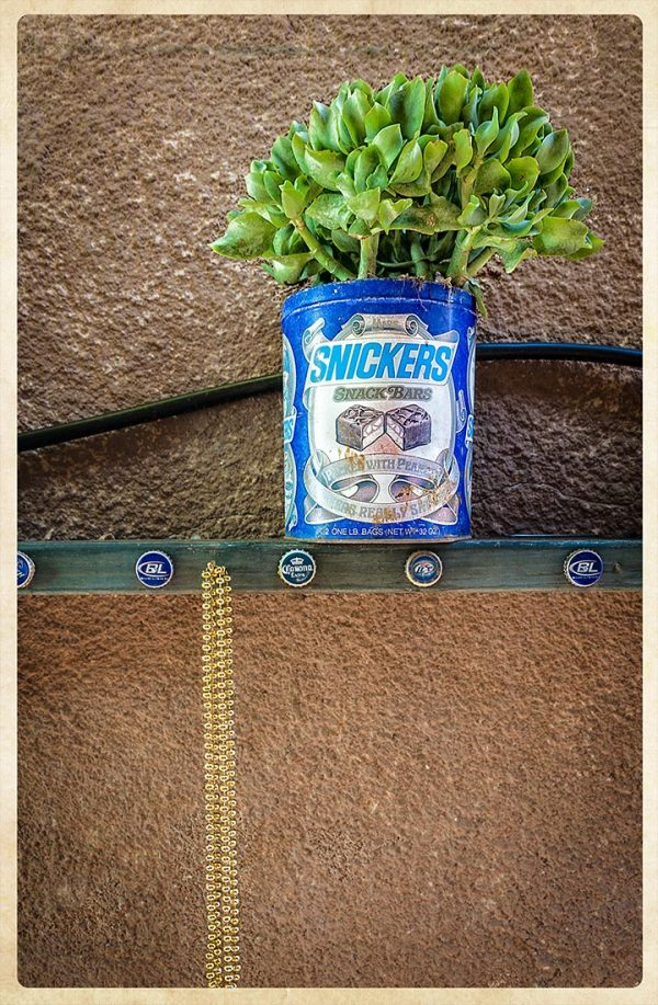 Snickers Planter