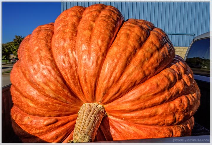 Big Orange