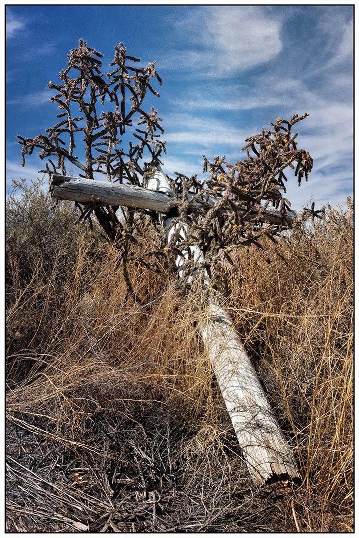 Cross in Thorns