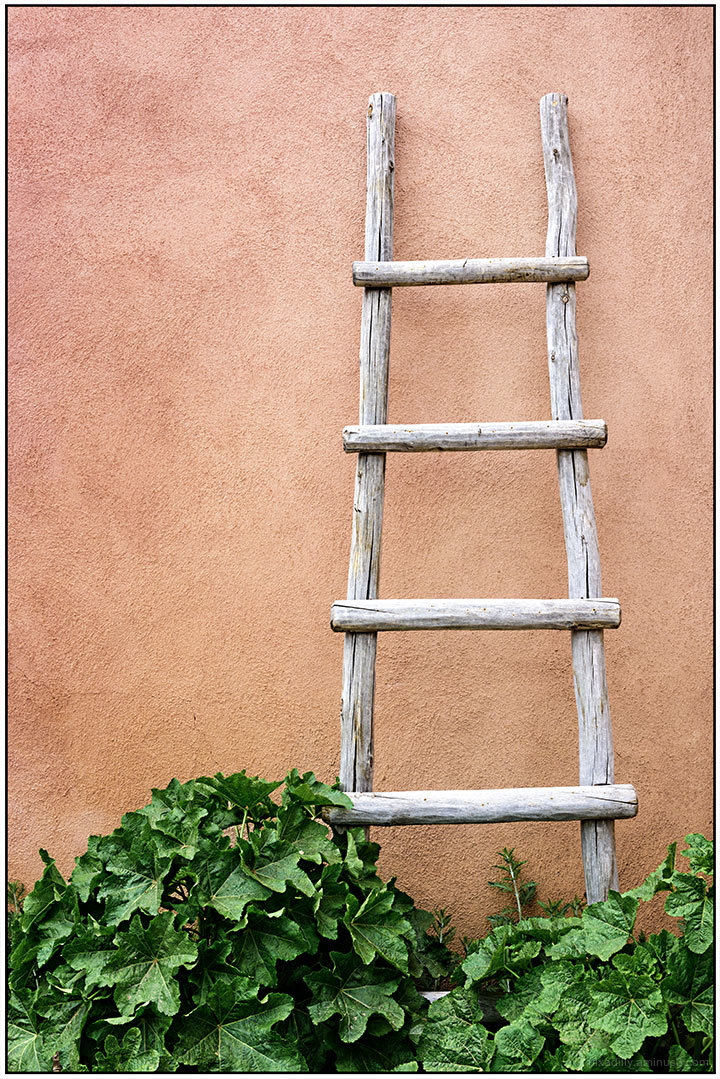 Simple Ladder