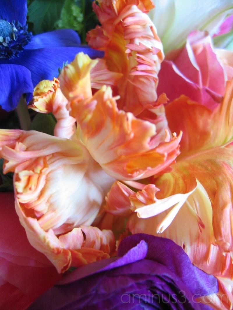 9thst florist