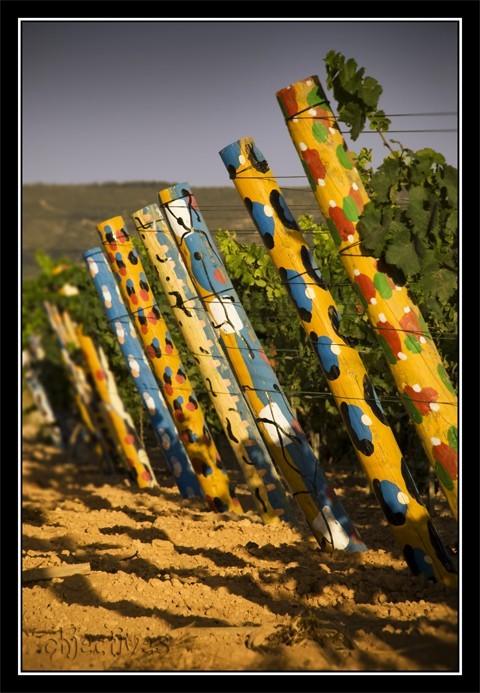 artist of vineyards