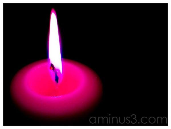 Life - Light Your Small Corner