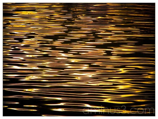 Life – Random Ripples On Water