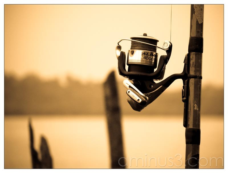 Life – Fishing Rod By The Water