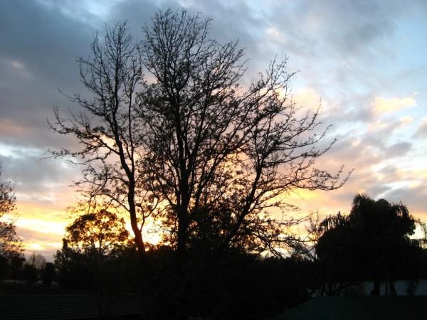 warwick farm sunset