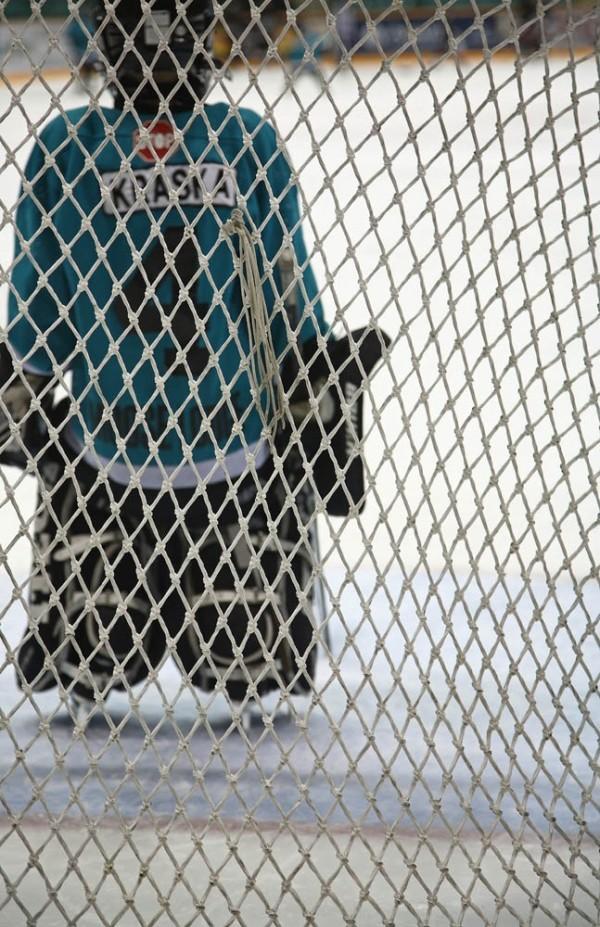 Guarding the Net
