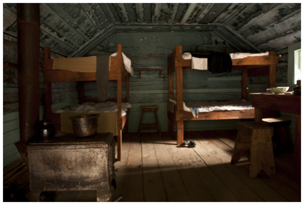Bunk Beds and Sunlight