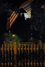 Night Picket Fence