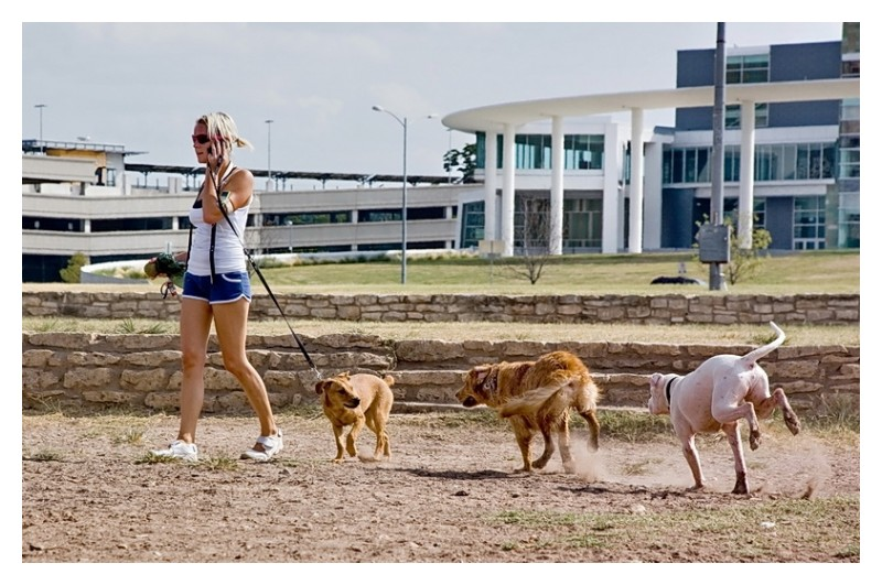 Woman on cell phone with dog on leash