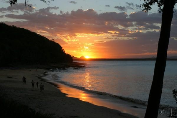 Australia. Noosa 6.