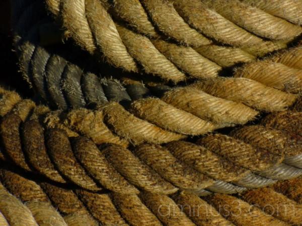 closup of rope ships museum rotterdam