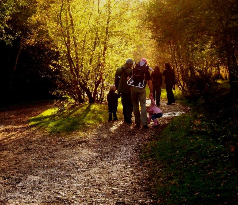 4.26 pm. Sutton Park, Birmingham UK